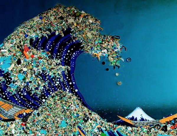 Ramassage de déchets !