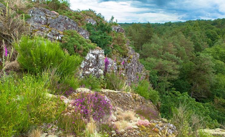 Journée nature en Ille et Vilaine