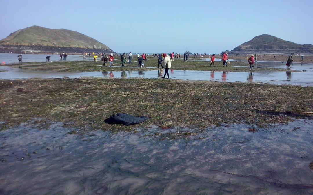 Les professionnels du tourisme formés aux bonnes pratiques de pêche à pied
