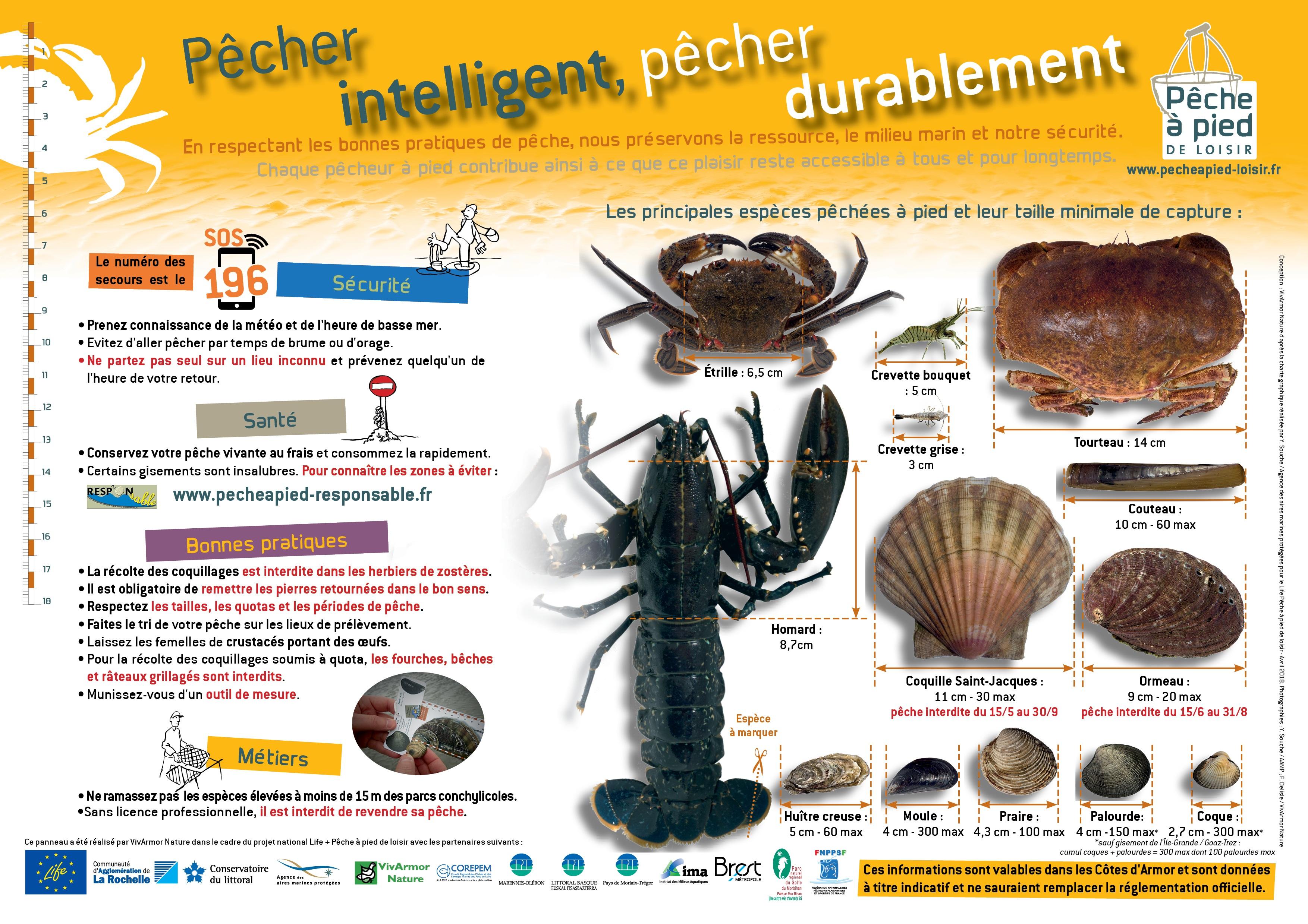 Calendrier Des Marees La Rochelle 2020.Les Grandes Marees En Cotes D Armor