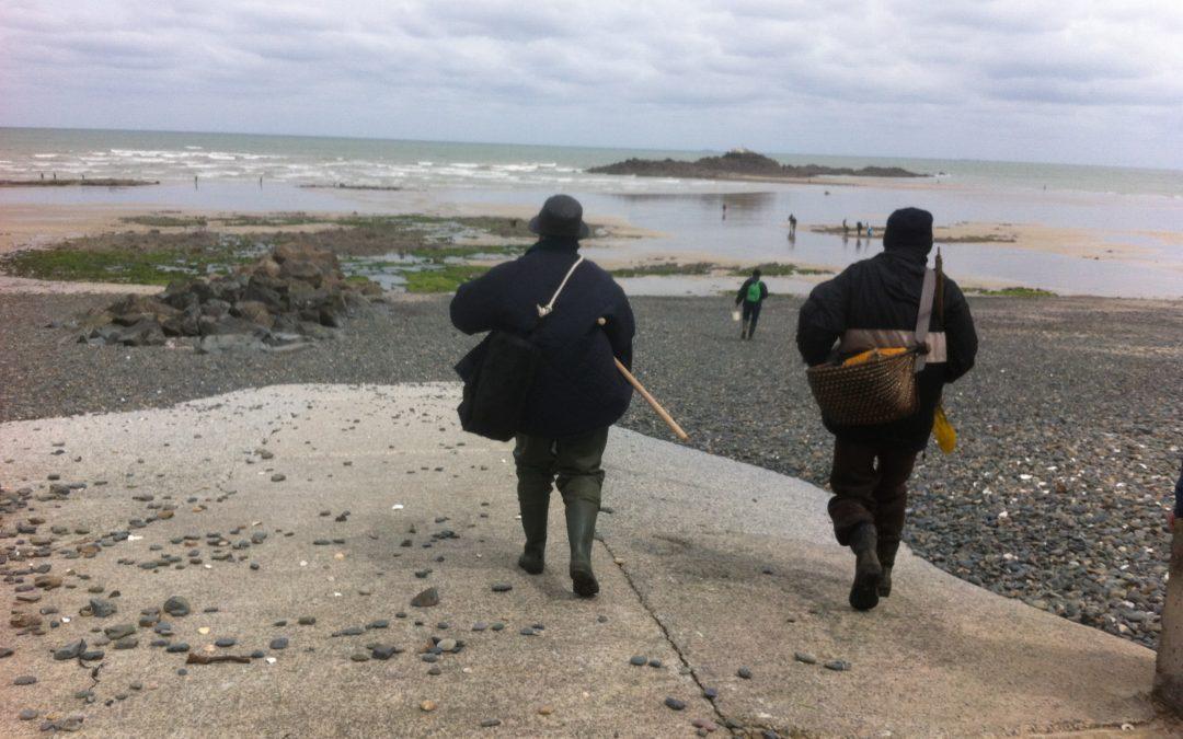 Bilan de la marée de sensibilisation des pêcheurs à pied du 30 avril