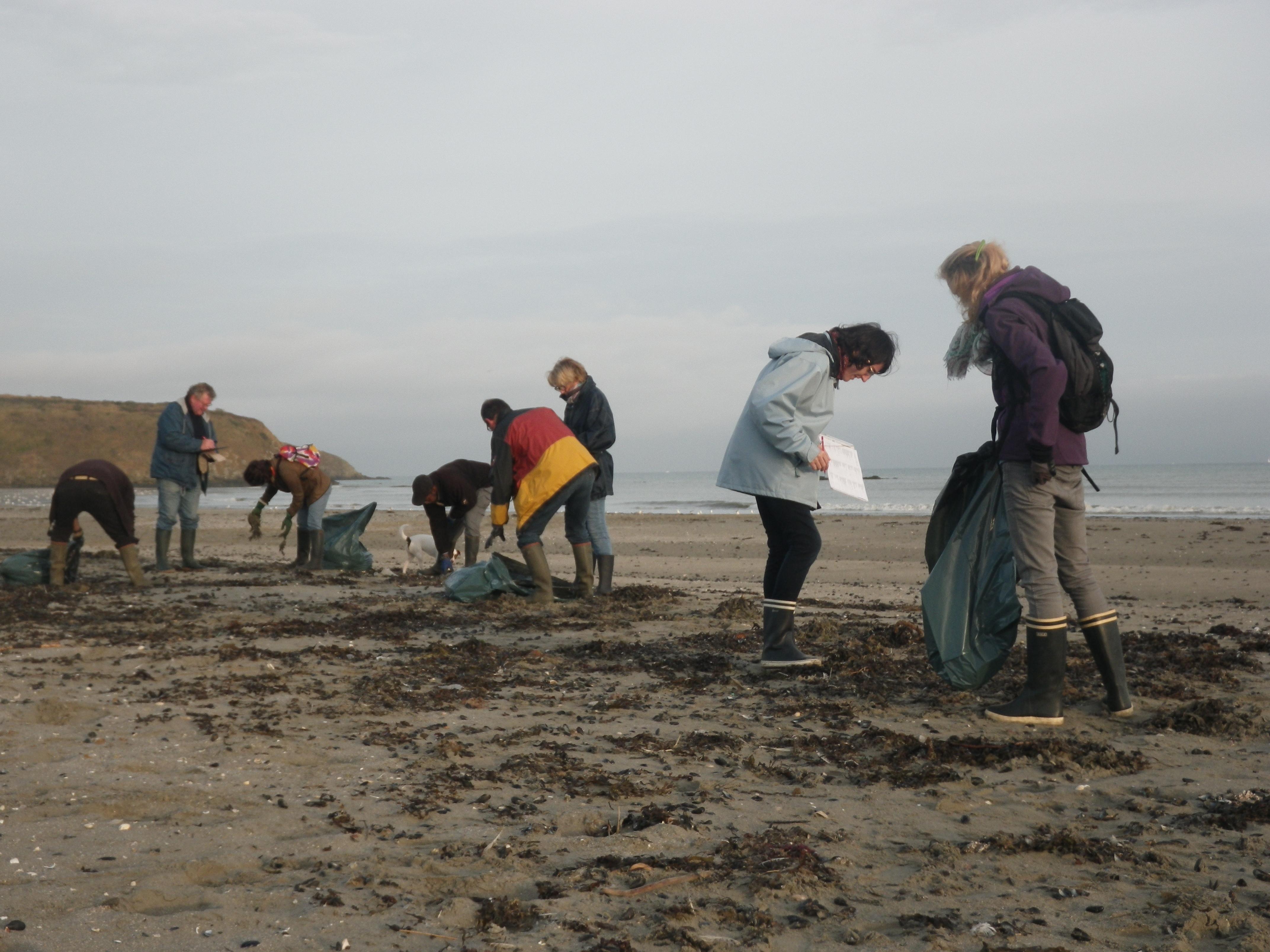Nettoyage de plages en baie de Saint-Brieuc
