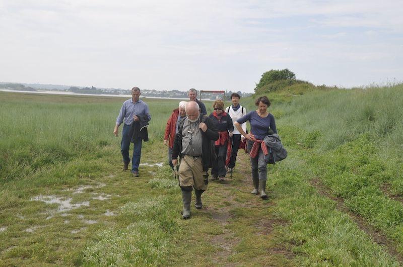 Le Tertre Corlieu et les polders de Ploubalay