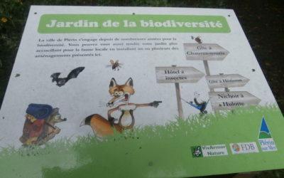 Visite commentée du jardin de la biodiversité des Rosaires