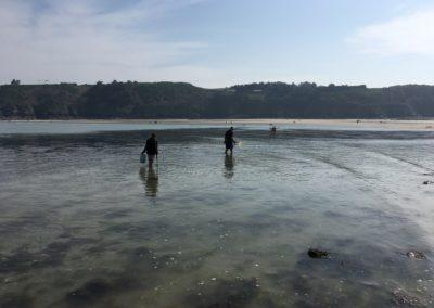 Pêcheurs de coquilles St-Jacques aux Godelins