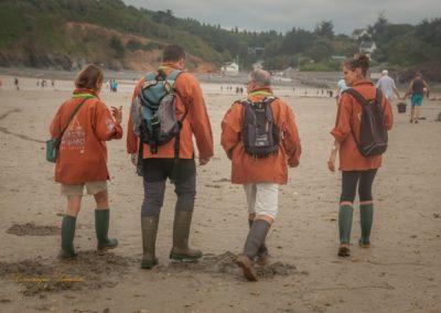 Médiateurs de l'estran au retour de marée à Martin-Plage