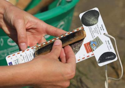 Mesure d'un couteau à l'aide de la réglette distribuée par nos équipes