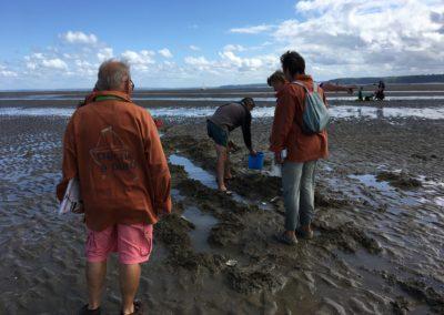 Rencontre des pêcheurs de lançons aux Bancs Roux