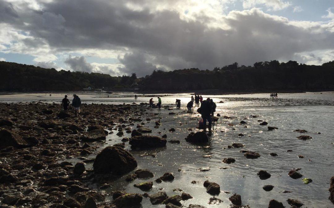 176 pêcheurs à pied sensibilisés lors des grandes marées du 28 septembre au 1er octobre