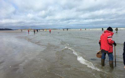 265 pêcheurs à pied sensibilisés lors des grandes marées du 10 au 12 mars 2020