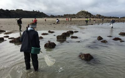 Observatoire de la pêche à pied de loisir : diagnostic 2018-2020