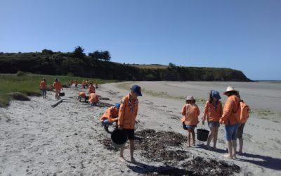 19 louveteaux à la découverte des dunes de Bon Abri !