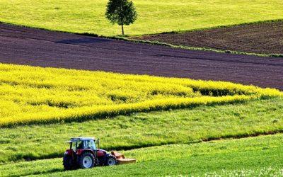 «Observatoire de l'agribashing» en Ille-et-Vilaine : les associations de protection de la nature disent non à une antenne DEMETER en Bretagne !