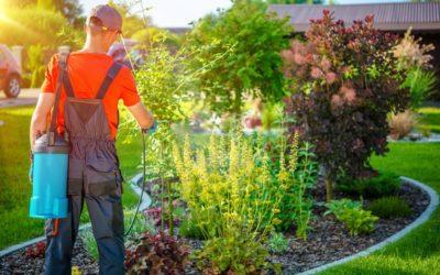 Consultation publique sur l'élargissement de l'interdiction des pesticides en zones non agricoles