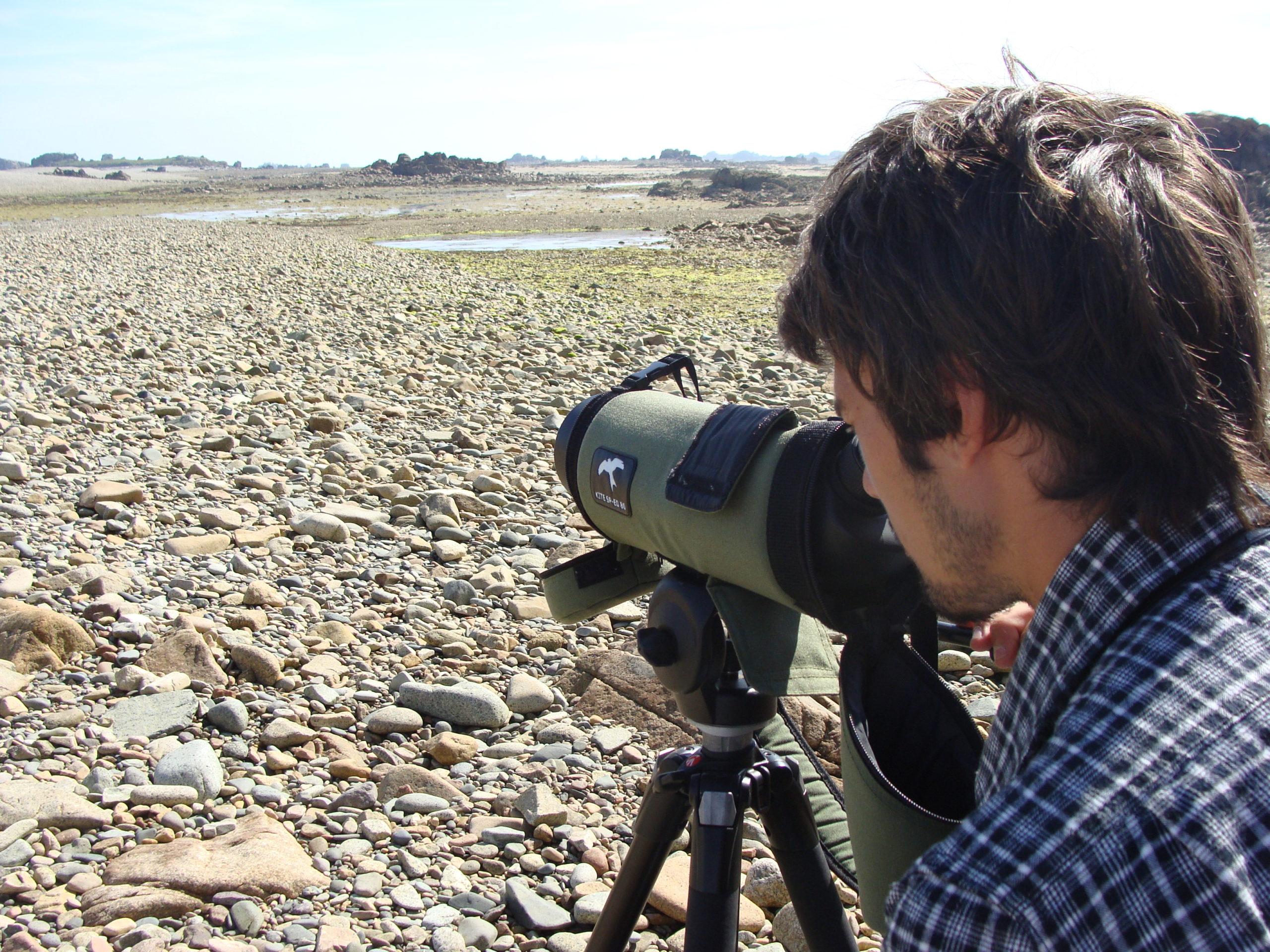 Comptages ornithologiques au Sillon de Talbert