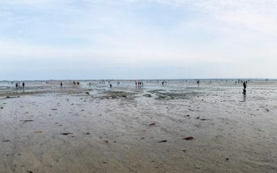300 pêcheurs à pied sensibilisés lors des grandes marées du 16 au 19 octobre 2020