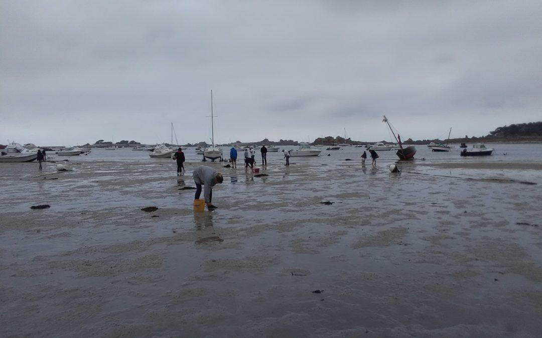 230 pêcheurs à pied sensibilisés lors des grandes marées du 18 au 20 septembre 2020