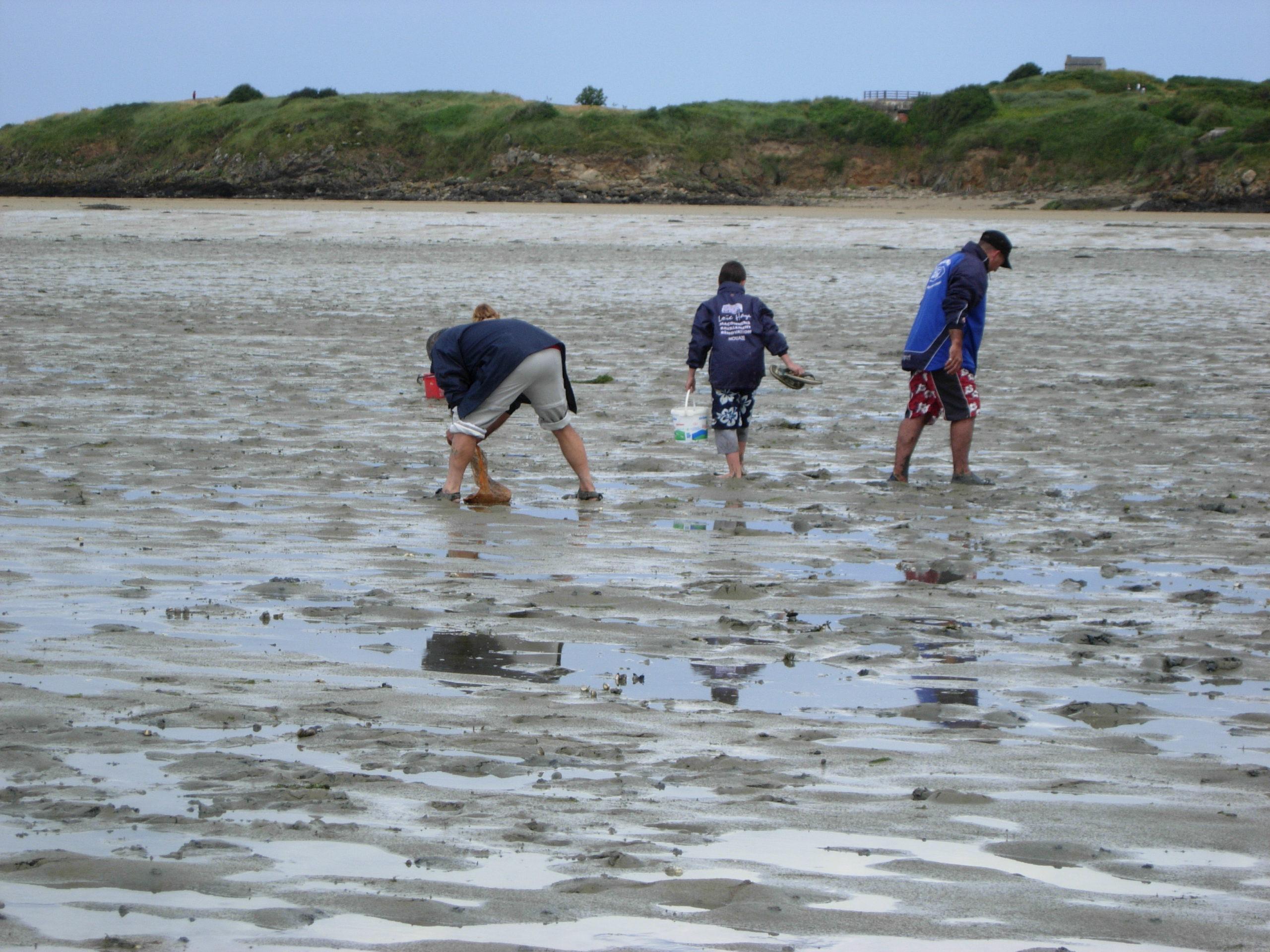 Sensibilisation des pêcheurs à pied au Banc du Guer