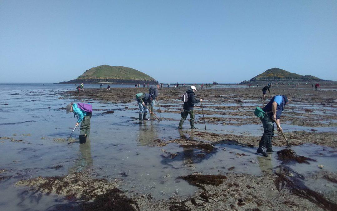 Grandes marées. Les pêcheurs à pied et les agents des offices du tourisme sensibilisés aux bonnes pratiques