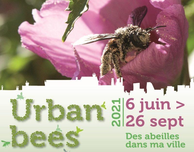 """Expo intérieure de la Maison de la Baie : """"Urbanbees - Des abeilles dans ma ville"""""""
